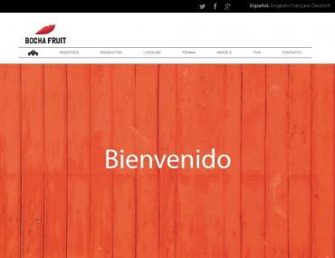 Bochafruit - Diseño Web Tienda Online por Soulvi